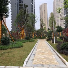 雍景新城三期园林照片