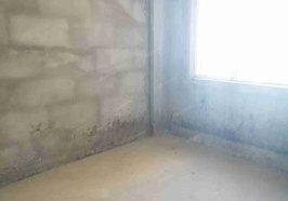 塞纳河畔 电梯房好楼层 103平米 3室2厅 49.5 万  证齐,满2年,钥匙在手