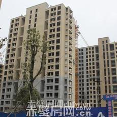 赤壁·凤凰城工程进度