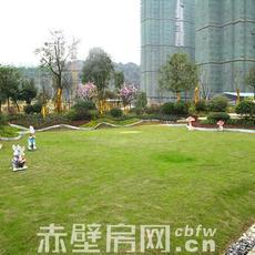 鹏成·新都汇园林实景图