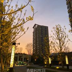 华景·御龙学府园林实景图