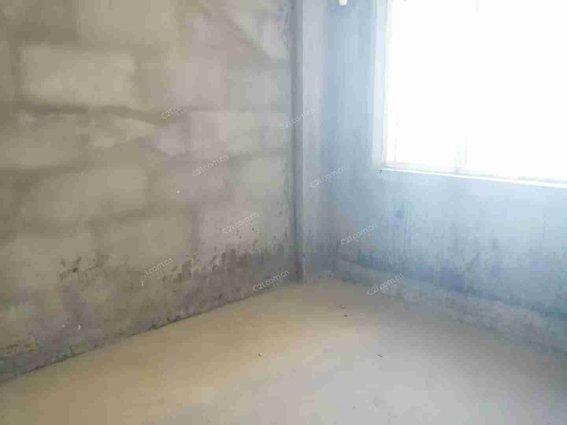 高端小区塞纳河畔3室毛坯,103平,前面无遮挡采光通风好,低于市场出售